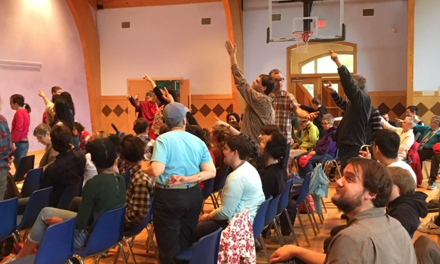 Reunión anual inclusiva del concejo Norteamericano (Camphill Soltane, 3-5 de mayo de 2019)