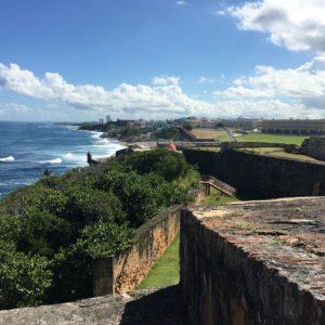 Дальнейшая подготовка в области лечебного образования в Пуэрто-Рико