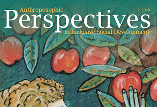 Perspectives 2-2020 – Now Online!